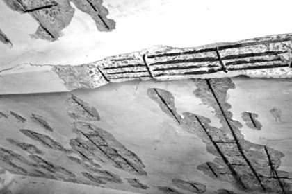 আত্রাইয়ের গুড়নয় স্কুলভবনের ছাদের পলেস্তারা খসে পড়েছে