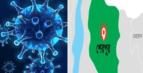 শেরপুরে একদিনে সর্বোচ্চ ১৪৬জনের দেহে করোনা শনাক্ত:মৃত্যু-১